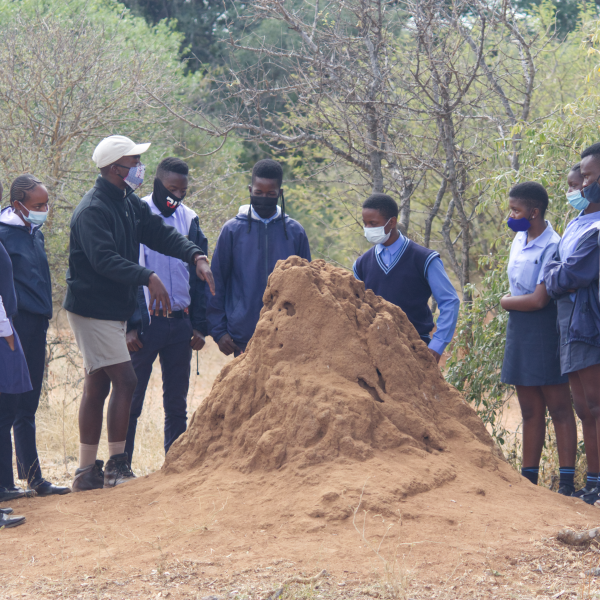 It Takes a Village – Abelana and the Children of Mashishimale